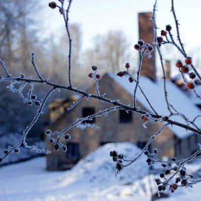 vinter_kvadrat